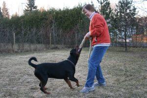 Comment jouer avec son chien en appartement