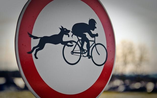 Panneau restrictif pour chien